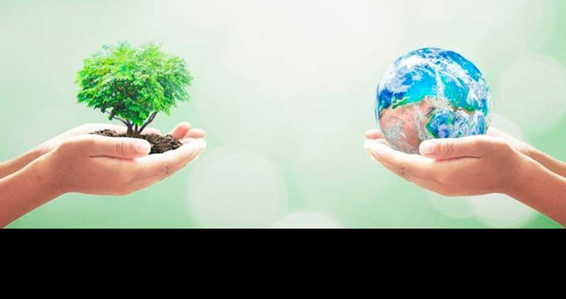 Cumbre de Sostenibilidad 2019: cambio climático, ciudades sostenibles y ecosistemas