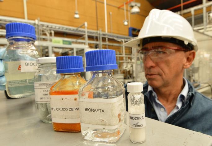 SANTANDER busca posicionarse en producción de cosméticos de alta gama